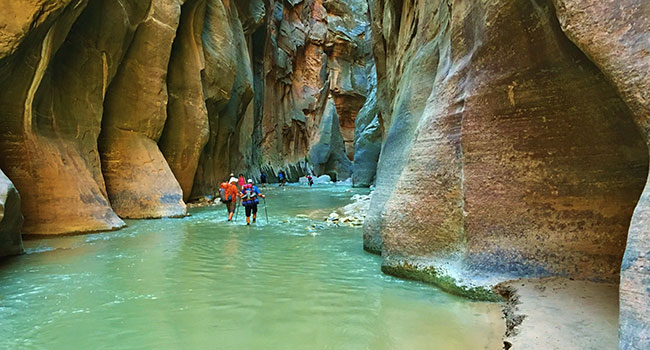 Hiking the Narrows in Zion Nationla Park